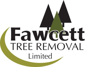 Fawcett Tree Removal
